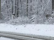 Snow on Churchtown Rd