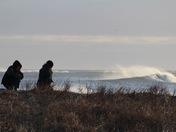 Combing the Dune
