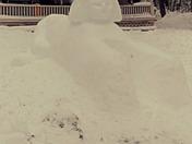Snow sphinx