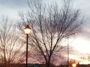 Perfect Pink Evening Sky