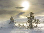 Yukon have fun in the snow