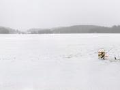 Ice Fishing Solitude