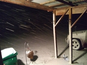 This is my backyard in Guston