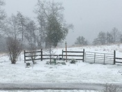 Snowy day in Wilkesboro