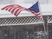Old glory in the blizzard