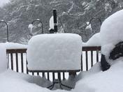 Snowfall in Center Barnstead, NH
