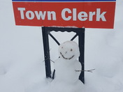 Snowy Voting Day