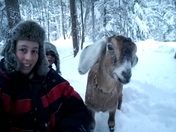 Sledding with Larry the goat