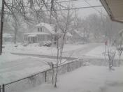 Blizzard Skylar photos, West Roxbury