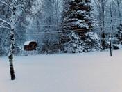 March winterland