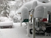 Snow at Natick MA Bird Feeders