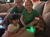 ST Patrick's Day little leprechauns