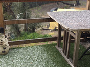Hail for more than 15 min. Santa Cruz Mtns