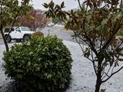Snow/Hail/Ice El Dorado Hills
