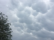 Interesting clouds