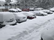 First major snow storm and it falls on the first day of spring and day after