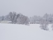 bank st exit and Shawnee golf course and my dog Jacks lol