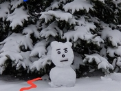 Snow Ted