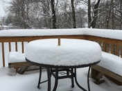"It's official; 8-8.5"" of snow has fallen"