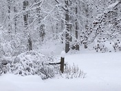 """16"""" at 6 PM and still snowing in Kralltown, York Co. Pa"""