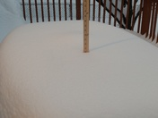 14  and 1/4 inches of snow March 20 & 21