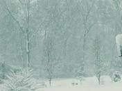 Snow 2018 in elkton maryland