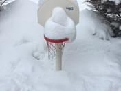 Basketball 🏀