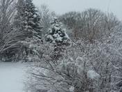 Winter Storm Toby
