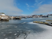 Frosty Harbour