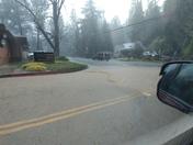 Cedar Revine Placerville California