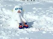 Skating Snowdog