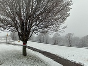 Snow in alleghany county