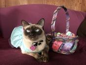 Penelope's Easter