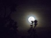 Moon Over Tijeras