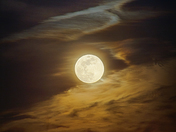 By the light of the full moon.