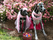 Lainey and Eloise Celebrating Easter!
