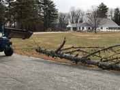 Peterborough NH Windstorm Cleanup