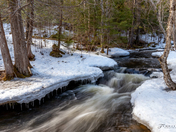 Spring Stream II