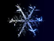 Blueflake