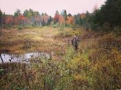Hunting NH