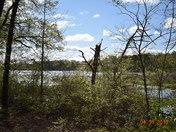 Lake Cunningham