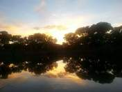 Bosque pond sunset