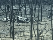 Oakwood,Okla fires (Rhea fires)