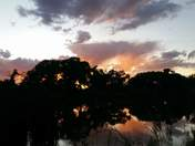 Sunset on the bosque pond