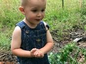 Daddy's helper\littlest farmer