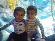 Devon and Aiden's 1st birthday