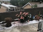Hail in May?