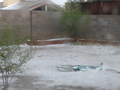 Hail in my backyard this afternood