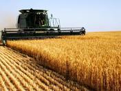 Agriculture Portfolio