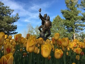 Olympic Statue with Tulips